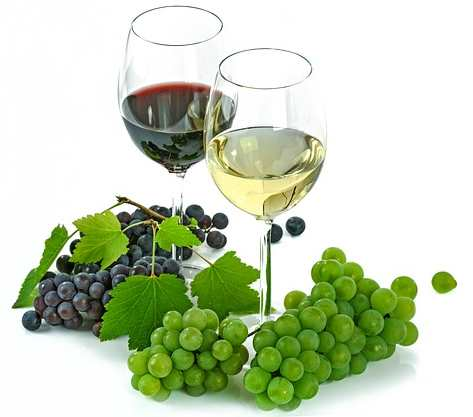 Welche Früchte zum Wein selber machen benutzen